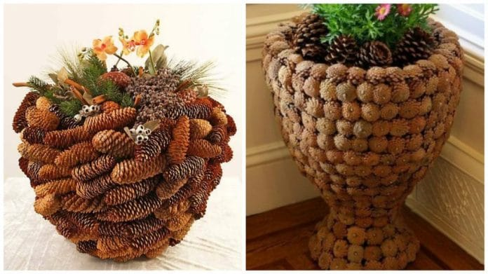 Planters-covered-with-pine-cones