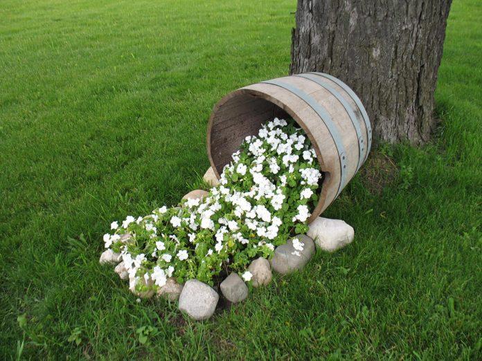 Spilled-Flower-Designs-on-a-Lawn