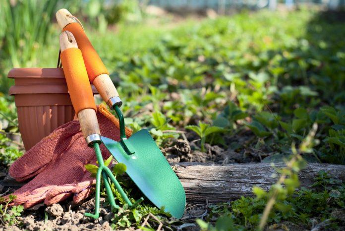 Winter-Gardening-Tasks