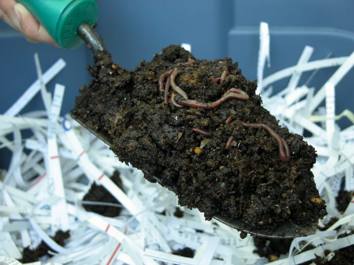 Worm-Composting-Box-for-Vermicomposting