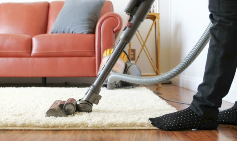 The 6 Best Vacuums For Shag Carpet (Oct. 2021)