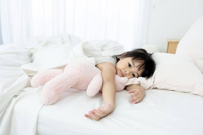 Best-Toddler-Pillow