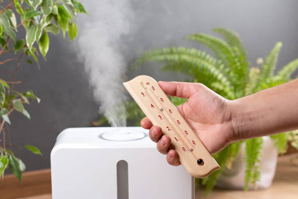 indoor-plant-humidifier